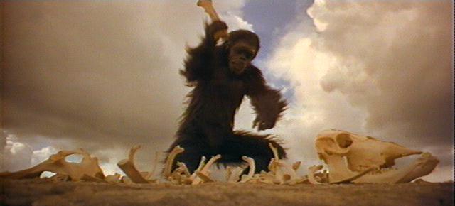 scimmia-2001-odissea-nello-spazio